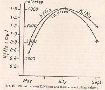 Balance térmico y concentración del Na y K.