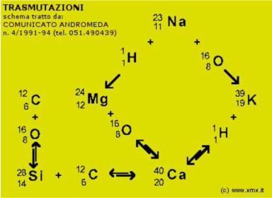 Cuadro de las transmutaciones biológicas con el ciclo Silicio --> Calcio.