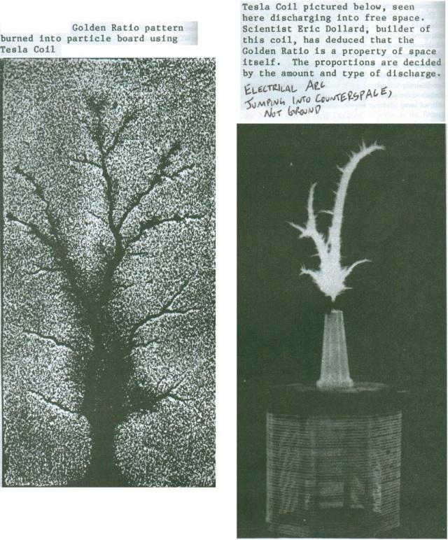 Comparativa entre un árbol y una descarga dieléctrica. Ambas siguen el patrón de Fibonacci.
