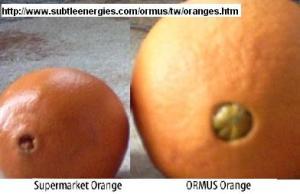 Naranjas tratadas con ORMUS.