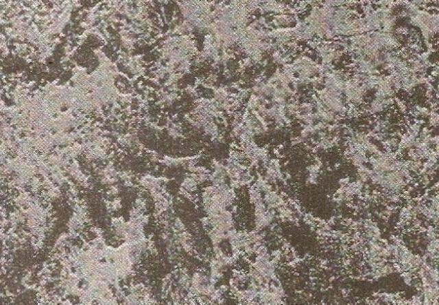 Copos bionosos tal y como los describió Reich en preparación de heno. x645. Ref; Heretic's Notebook. Pag 91.