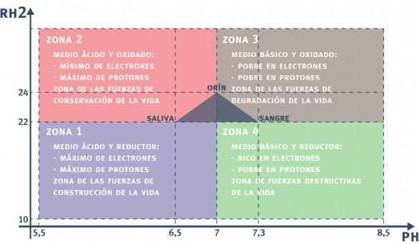 Esquema básico pH, rH y resistividad de la bioelectrónica Louis Claude Vincent.